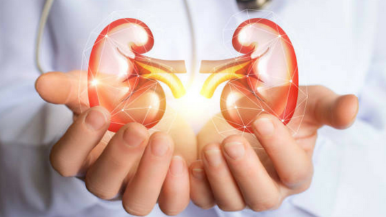 Bariatric Surgery helps in Kidney