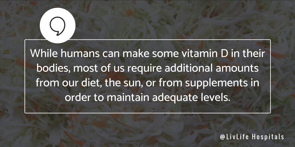 Vitamin D Human Body