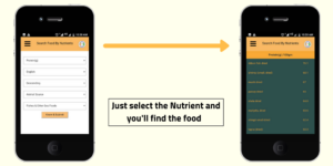 NIN's Personal Nutrition Advisor App